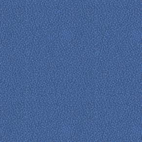 YPO21-Bluefield